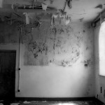 Photography - Asylum Series